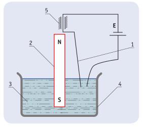Рис. 1. Принципиальная схема первичного электродвигателя Майкла Фарадея.